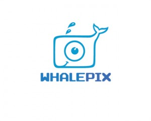 Whalepix 40 impeccable Logo Designs 40 impeccable Logo Designs Whalepix
