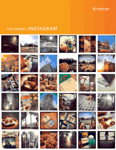 The Skinny: Instagram 14 Free Social Media Marketing eBooks for Your Small Business 14 Free Social Media Marketing eBooks for Your Small Business image 13