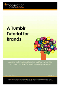 Tumblr for brands 14 Free Social Media Marketing eBooks for Your Small Business 14 Free Social Media Marketing eBooks for Your Small Business image 7